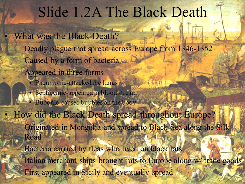 Slide 1.2A The Black Death What was the Black Death