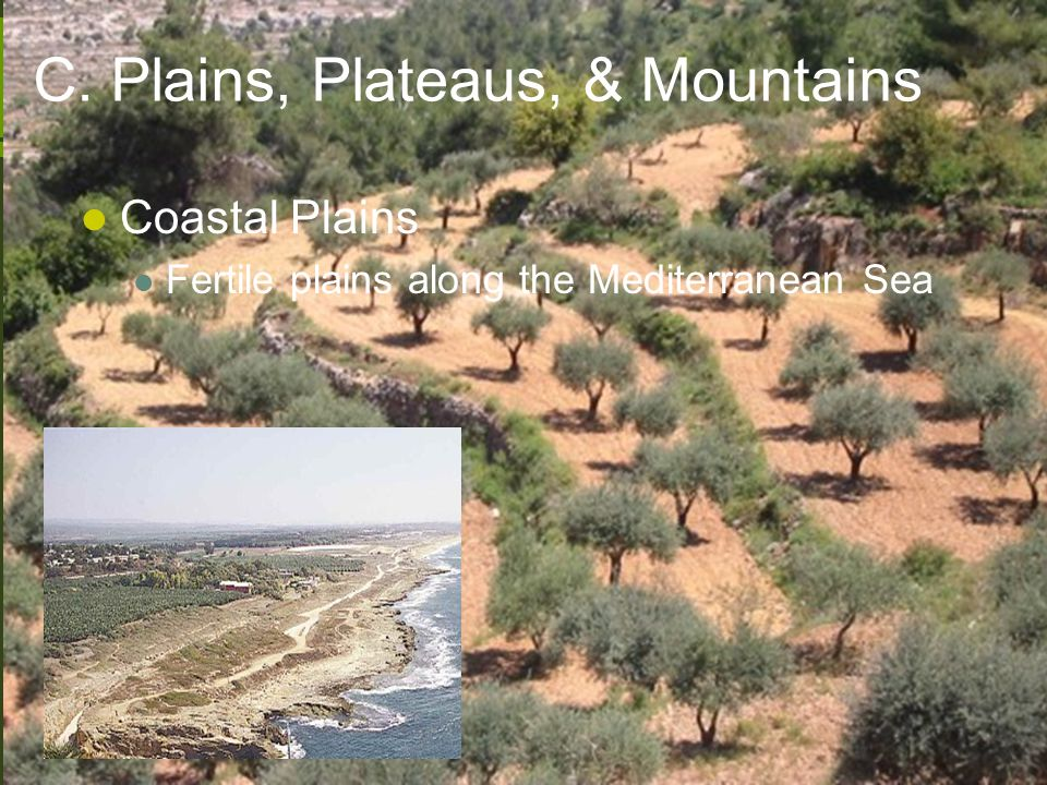 C. Plains, Plateaus, & Mountains