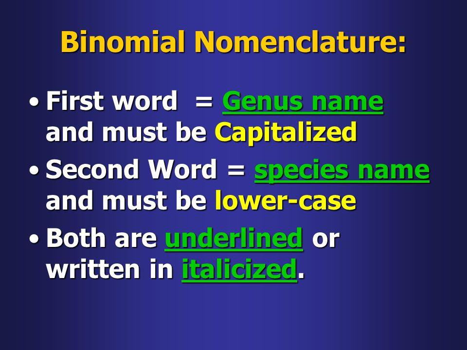 Binomial Nomenclature: