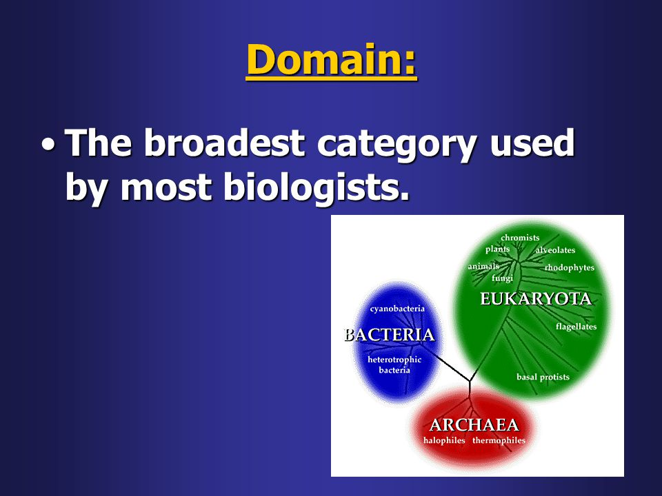 Domain: The broadest category used by most biologists.