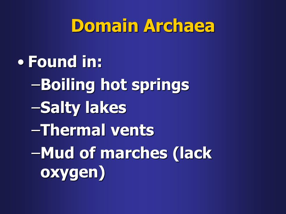 Domain Archaea Found in: Boiling hot springs Salty lakes Thermal vents