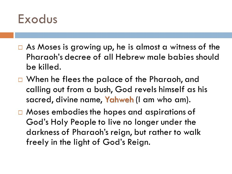 Exodus As Moses is growing up, he is almost a witness of the Pharaoh's decree of all Hebrew male babies should be killed.