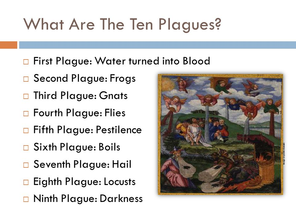 What Are The Ten Plagues