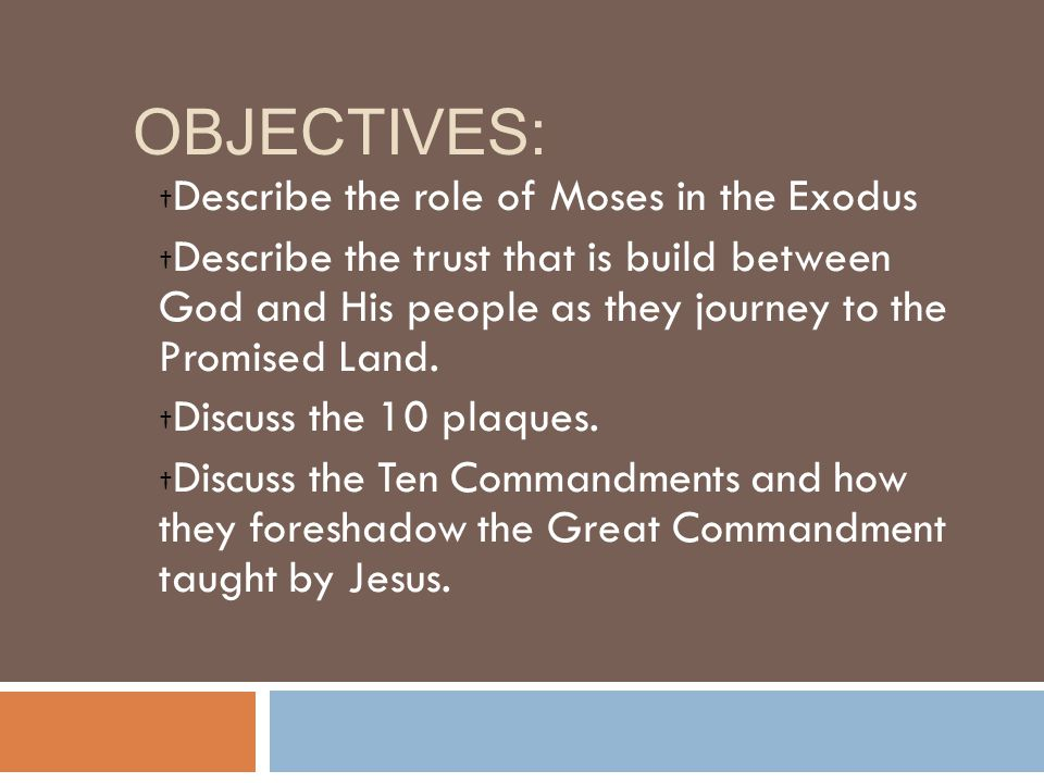 Objectives: Describe the role of Moses in the Exodus
