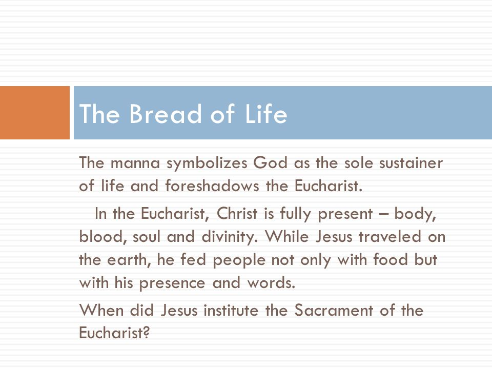 The Bread of Life The manna symbolizes God as the sole sustainer of life and foreshadows the Eucharist.