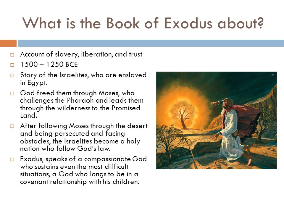 What is the Book of Exodus about