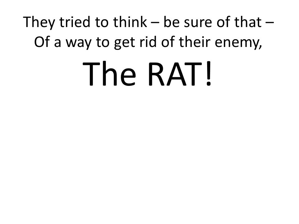The RAT! They tried to think – be sure of that –