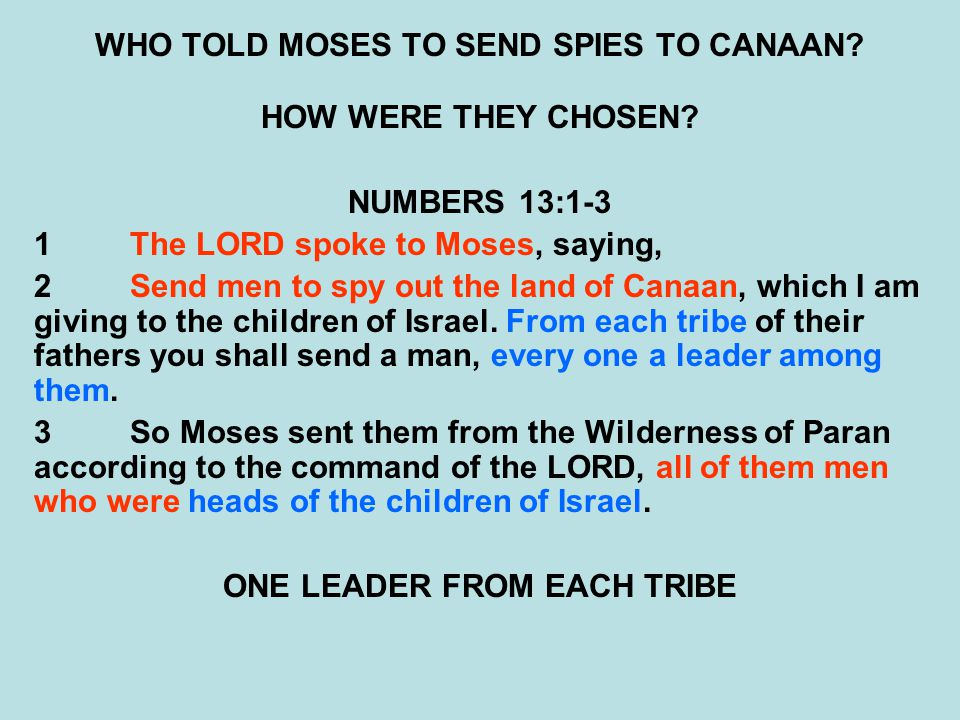 WHO TOLD MOSES TO SEND SPIES TO CANAAN