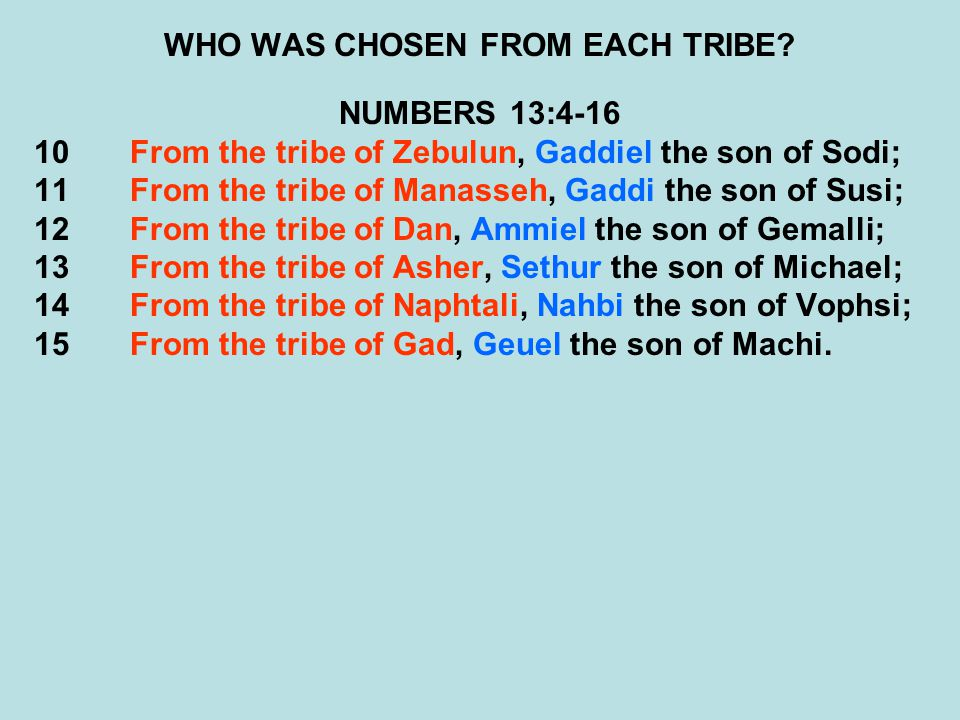 WHO WAS CHOSEN FROM EACH TRIBE