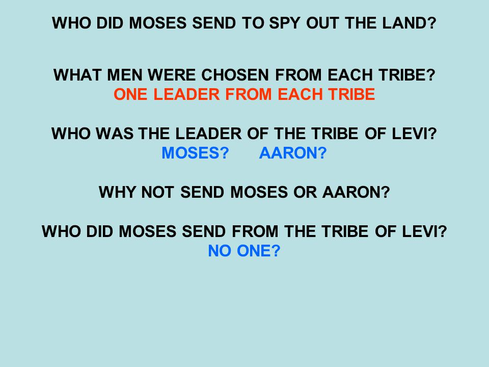 WHO DID MOSES SEND TO SPY OUT THE LAND