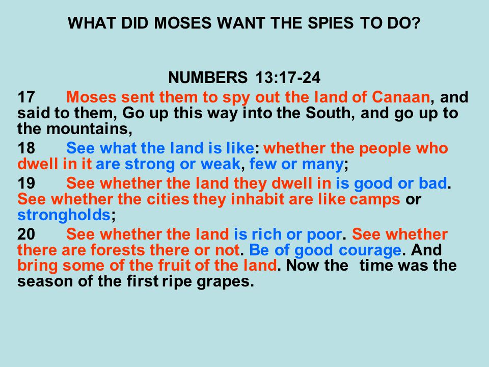 WHAT DID MOSES WANT THE SPIES TO DO