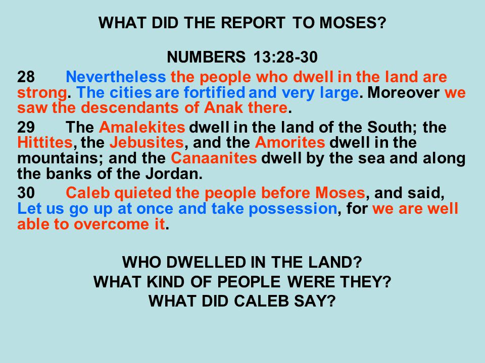 WHAT DID THE REPORT TO MOSES