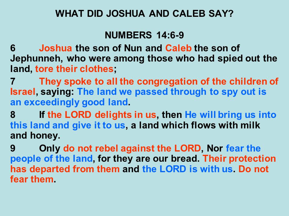 WHAT DID JOSHUA AND CALEB SAY