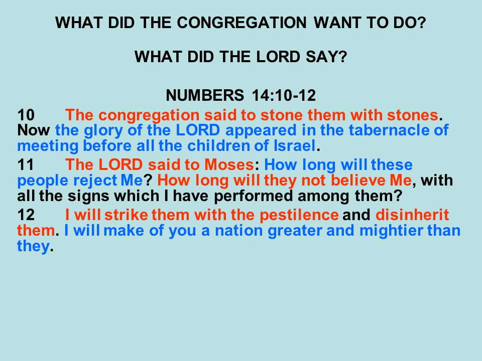 WHAT DID THE CONGREGATION WANT TO DO