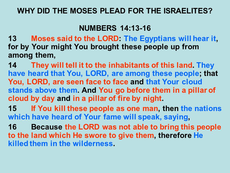 WHY DID THE MOSES PLEAD FOR THE ISRAELITES