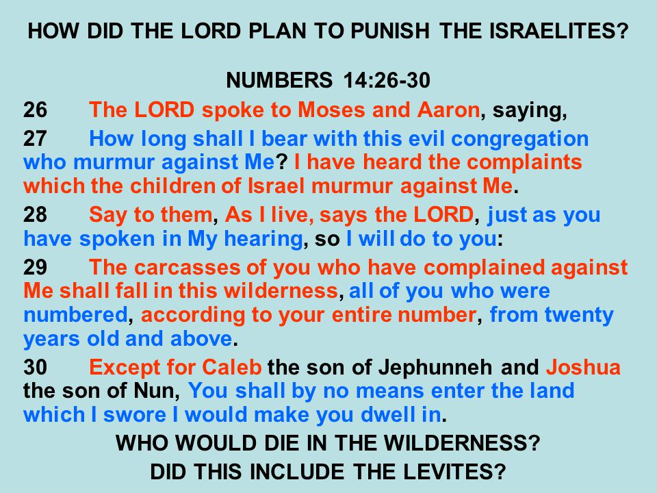 HOW DID THE LORD PLAN TO PUNISH THE ISRAELITES