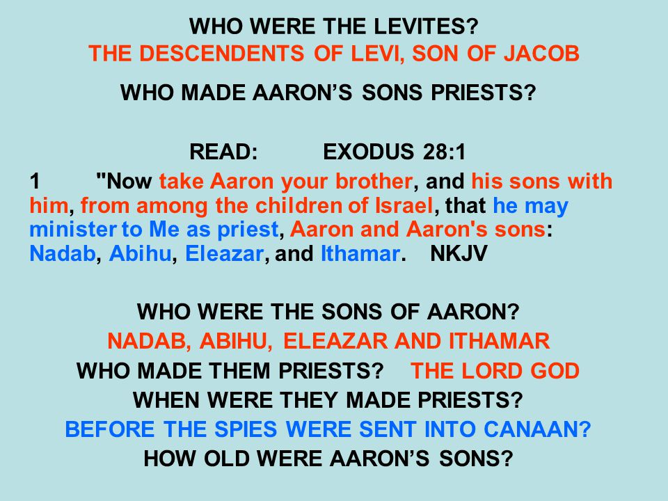 WHO WERE THE LEVITES THE DESCENDENTS OF LEVI, SON OF JACOB