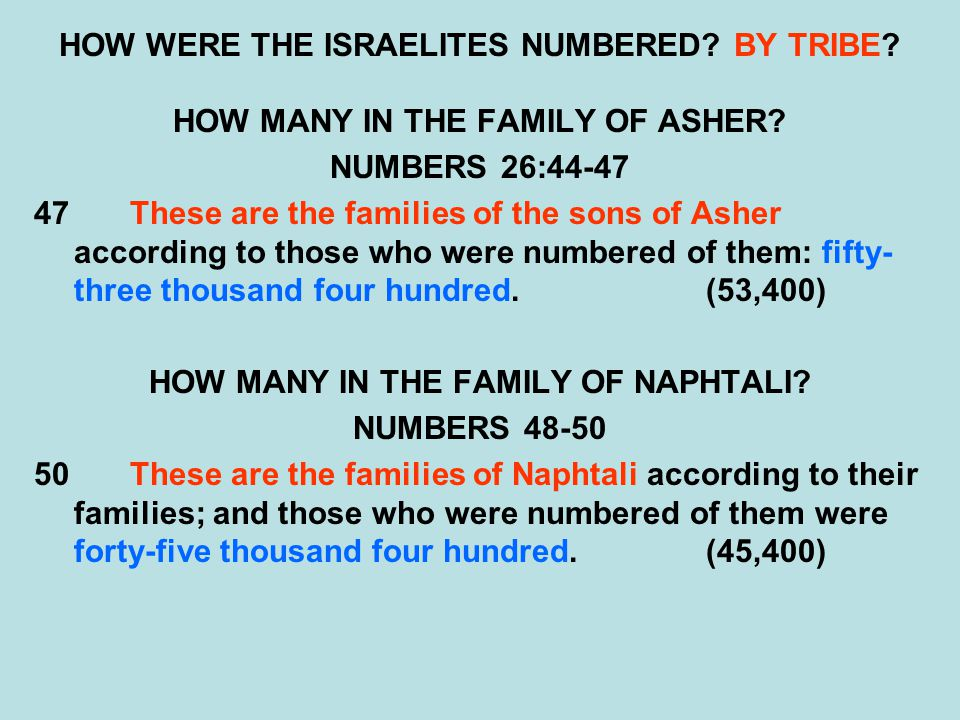HOW WERE THE ISRAELITES NUMBERED BY TRIBE