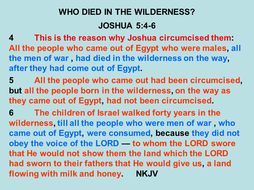 WHO DIED IN THE WILDERNESS