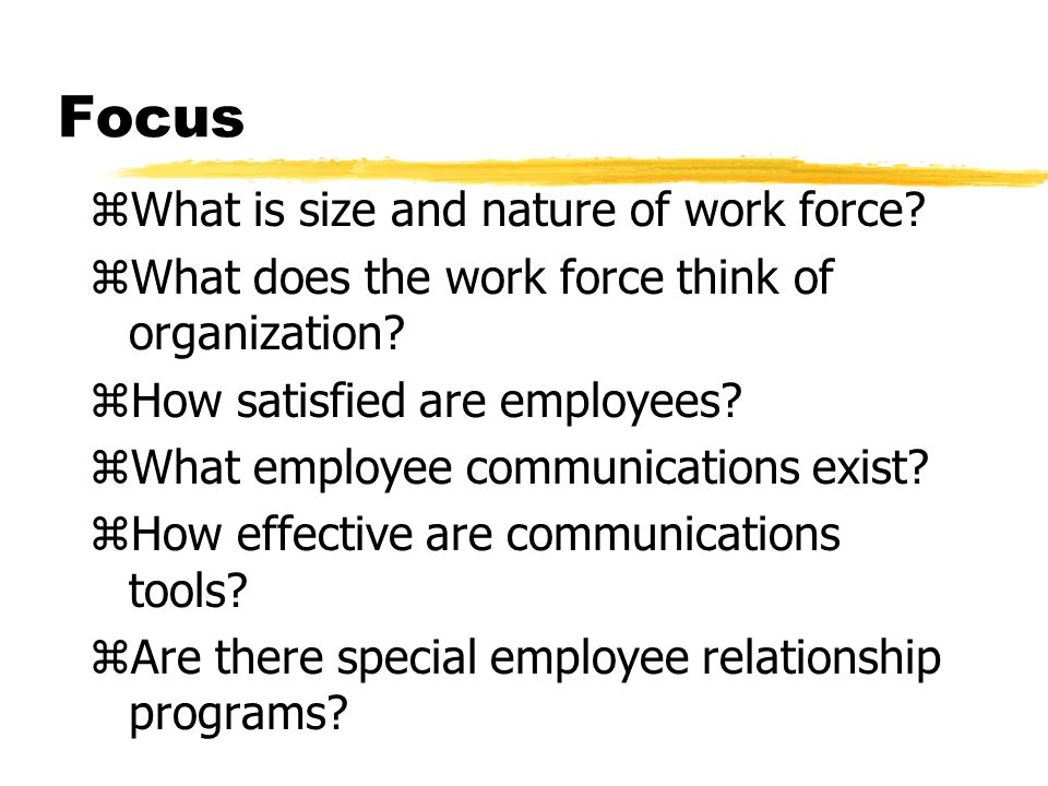 Focus What is size and nature of work force
