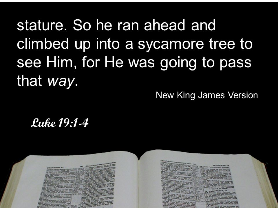 stature. So he ran ahead and climbed up into a sycamore tree to see Him, for He was going to pass that way.