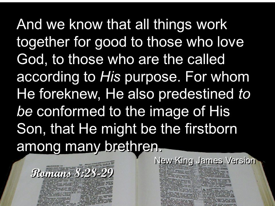And we know that all things work together for good to those who love God, to those who are the called according to His purpose. For whom He foreknew, He also predestined to be conformed to the image of His Son, that He might be the firstborn among many brethren.
