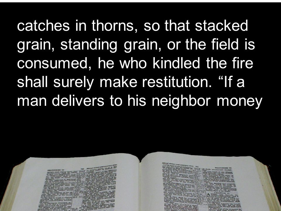 catches in thorns, so that stacked grain, standing grain, or the field is consumed, he who kindled the fire shall surely make restitution.