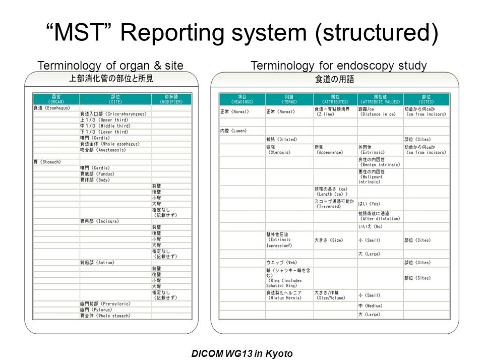 MST Reporting system (structured)