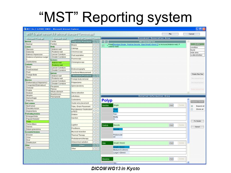 MST Reporting system