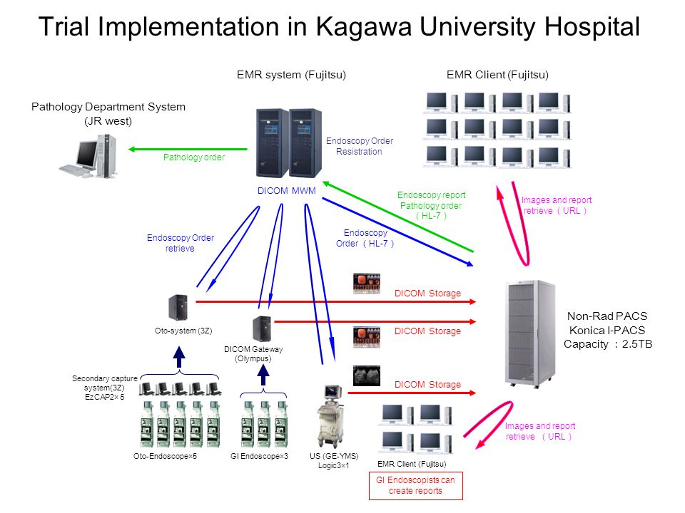 Trial Implementation in Kagawa University Hospital