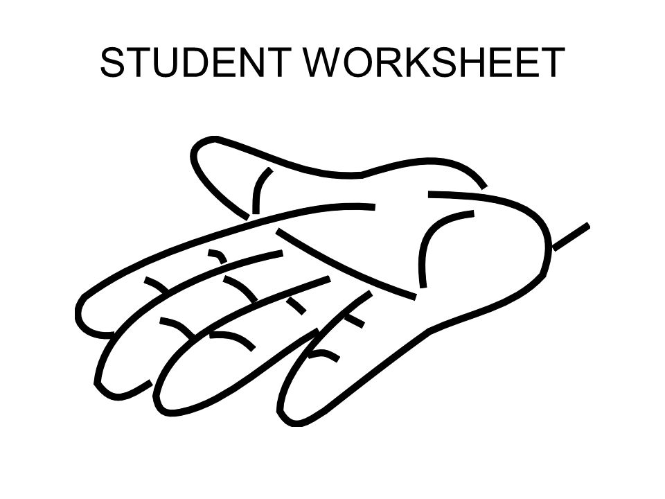 STUDENT WORKSHEET