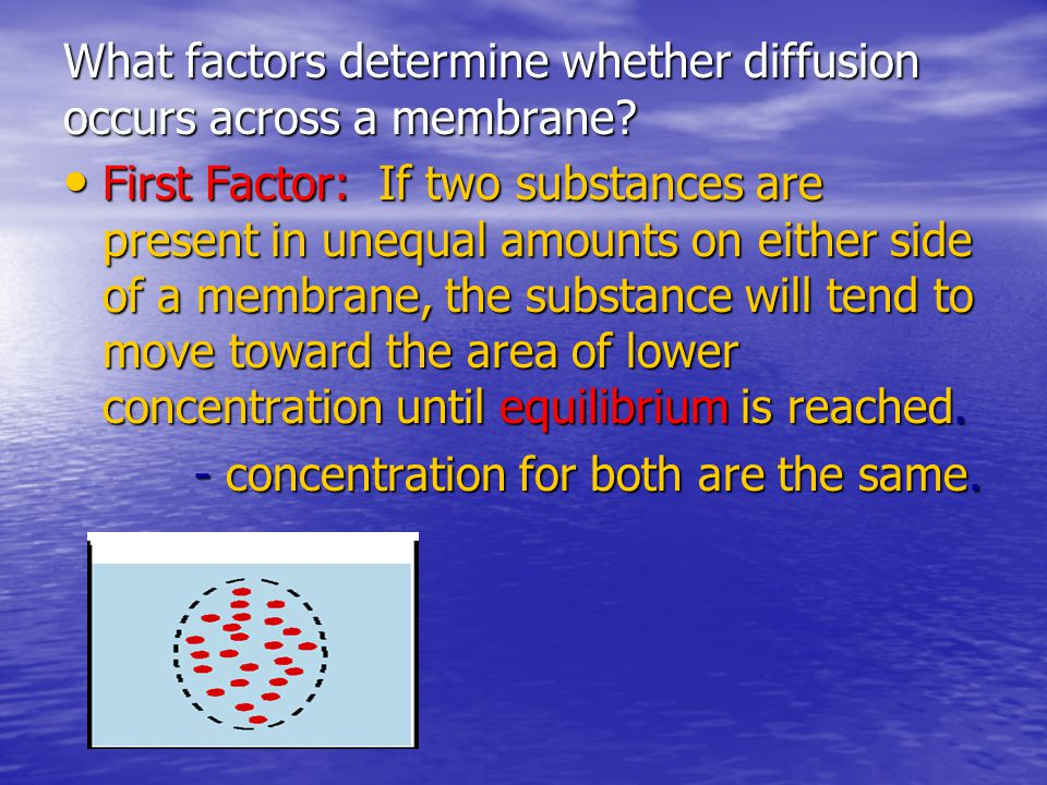 What factors determine whether diffusion occurs across a membrane