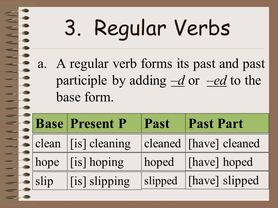 3. Regular Verbs A regular verb forms its past and past participle by adding –d or –ed to the base form.