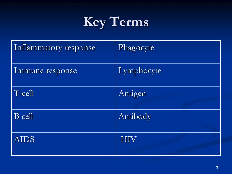 Key Terms Inflammatory response Phagocyte Immune response Lymphocyte