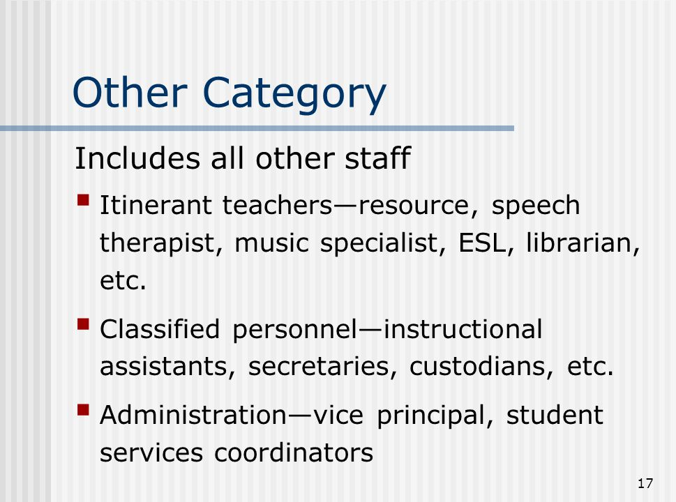 Other Category Includes all other staff