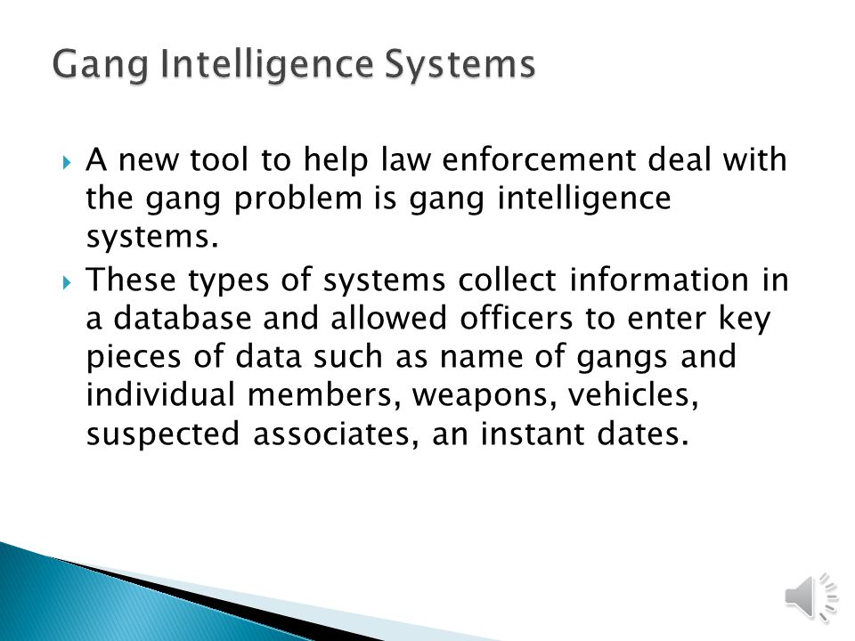 Gang Intelligence Systems