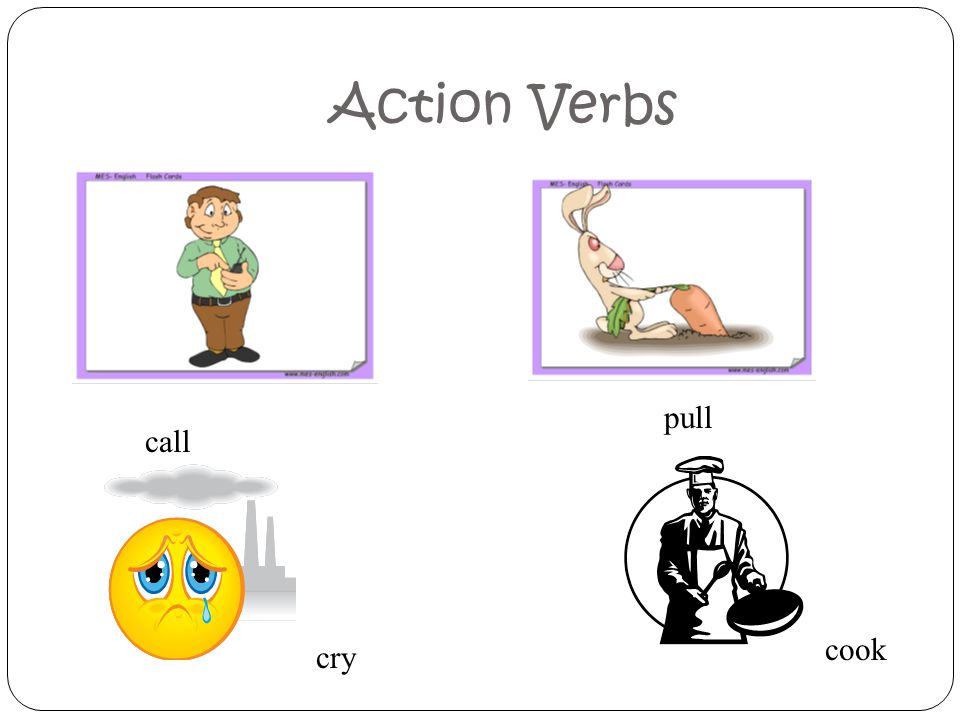 Action Verbs pull call cook cry