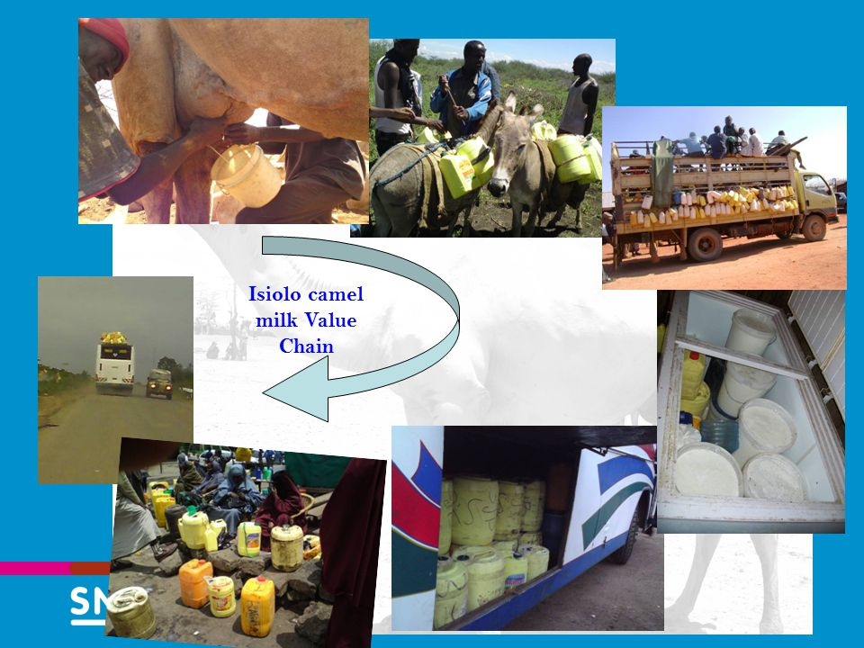 Isiolo camel milk Value Chain