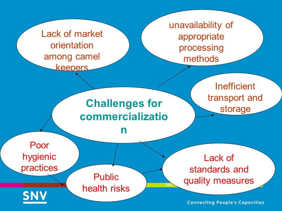 Challenges for commercialization