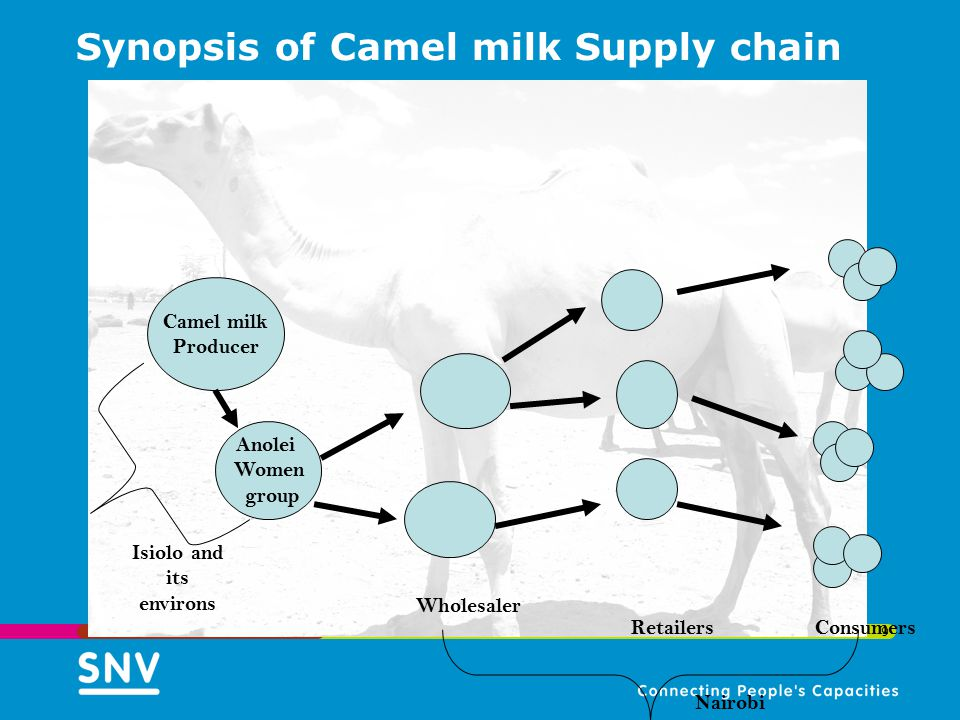 Synopsis of Camel milk Supply chain