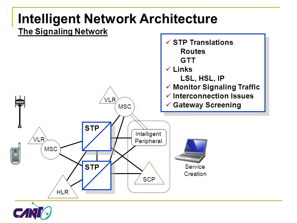 Intelligent Network Architecture The Signaling Network