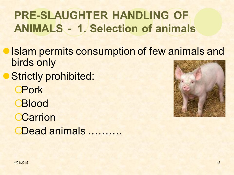 PRE-SLAUGHTER HANDLING OF ANIMALS - 1. Selection of animals