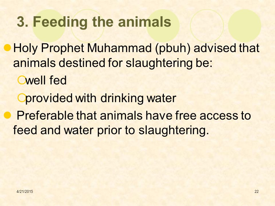 3. Feeding the animals Holy Prophet Muhammad (pbuh) advised that animals destined for slaughtering be: