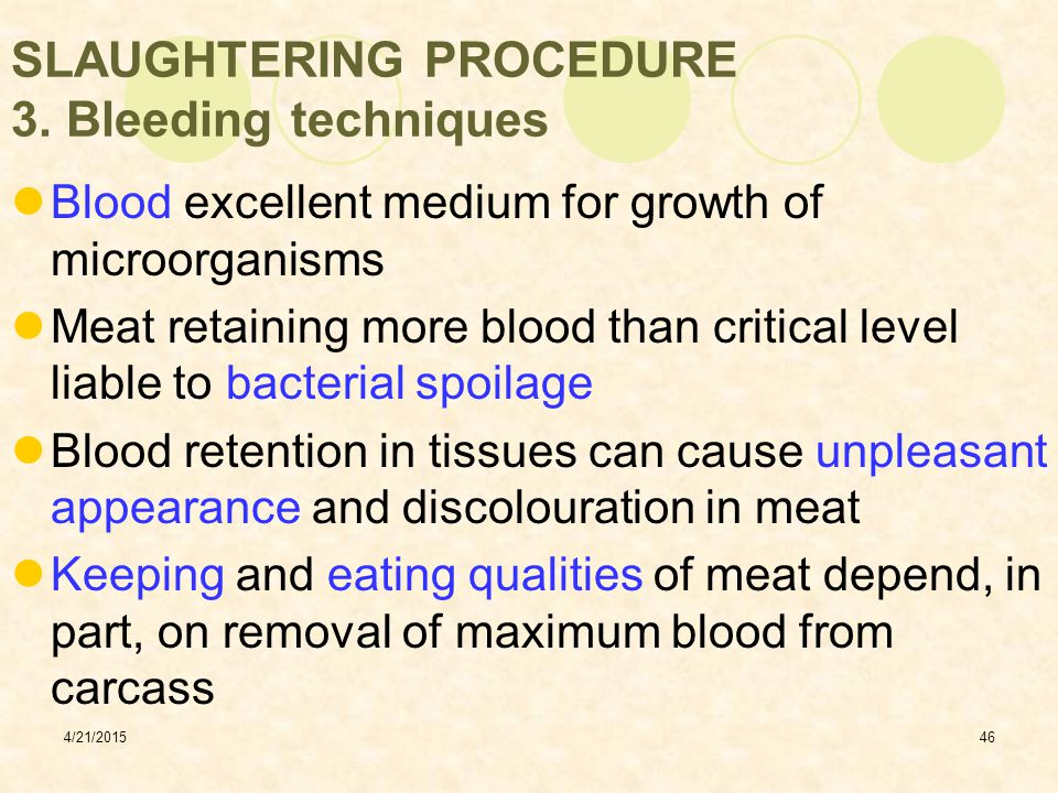 SLAUGHTERING PROCEDURE 3. Bleeding techniques
