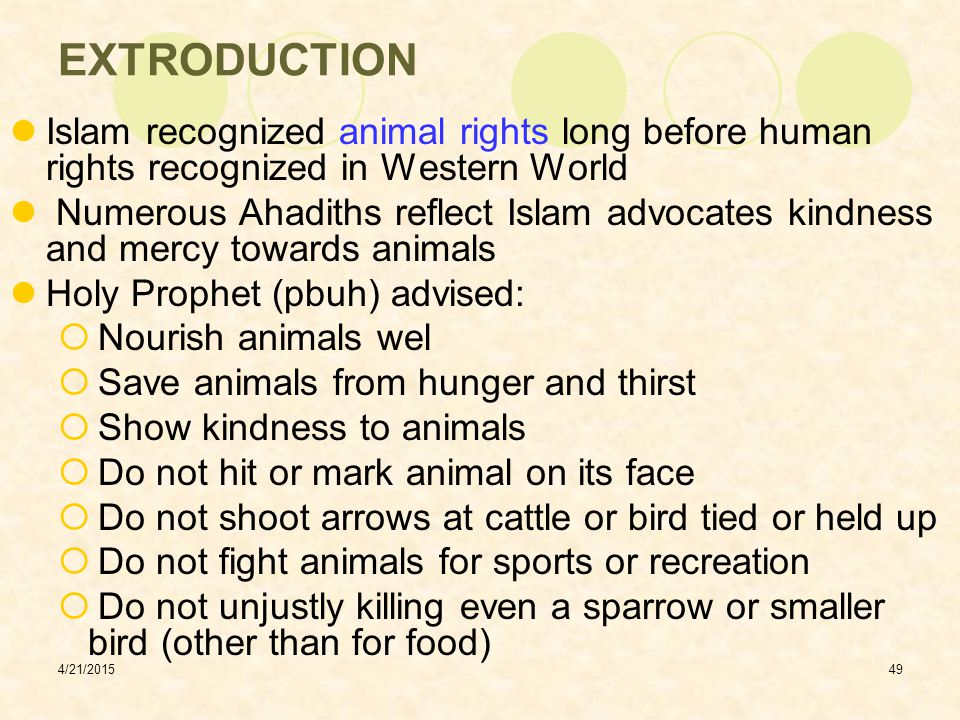 EXTRODUCTION Islam recognized animal rights long before human rights recognized in Western World.