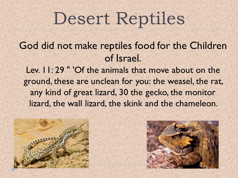 God did not make reptiles food for the Children of Israel.