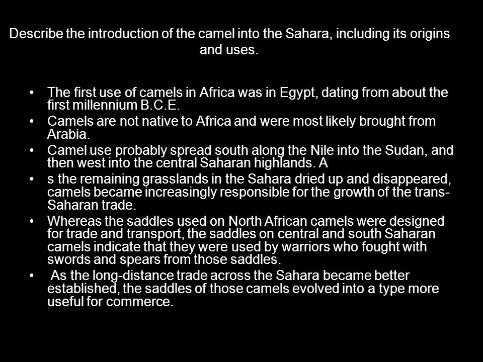 Describe the introduction of the camel into the Sahara, including its origins and uses.