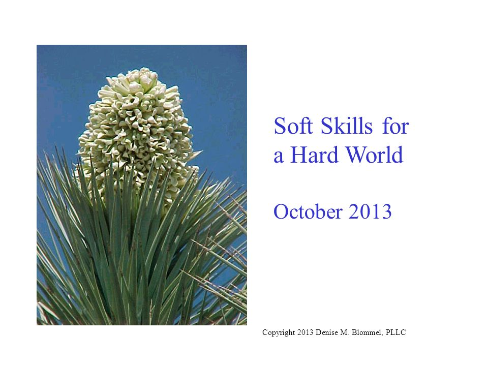 Soft Skills for a Hard World