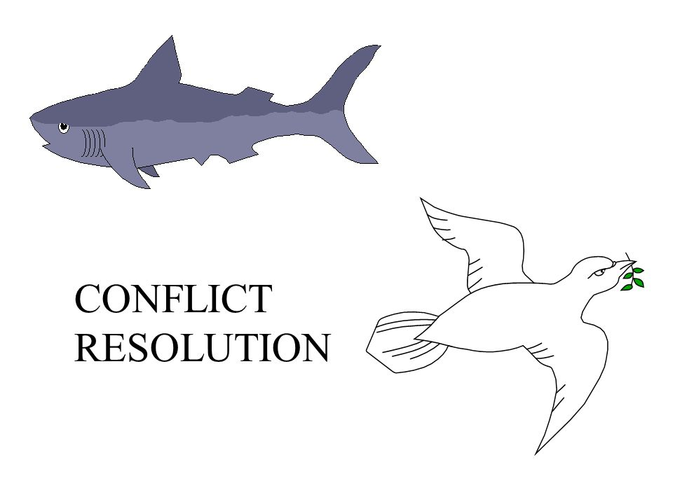 CONFLICT RESOLUTION 30