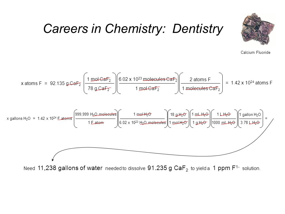 Careers in Chemistry: Dentistry